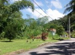 Maraval-Land-For sale